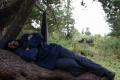 Алексей отдыхает
