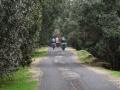 Природный парк Ифран