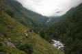 По долине Чулышмана