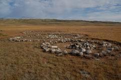 Захоронения и курганы урочища Бертека